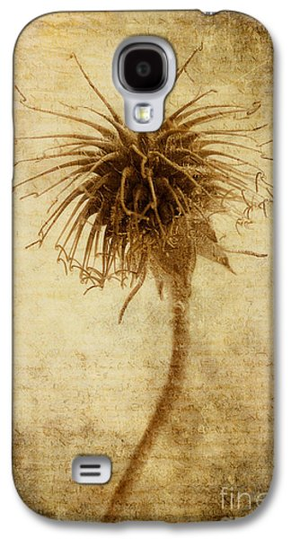 Seed Galaxy S4 Cases - Crown of Thorns Galaxy S4 Case by John Edwards