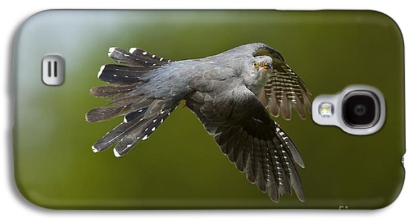 Cuckoo Flying Galaxy S4 Case by Steen Drozd Lund
