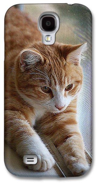 Digital Galaxy S4 Cases - Cute cat window Galaxy S4 Case by Queso Espinosa