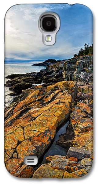 Sun Galaxy S4 Cases - Cutler Coast Lichen Galaxy S4 Case by Bill Caldwell -        ABeautifulSky Photography