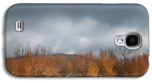 Autumn Scene Galaxy S4 Cases - Cuyamaca Autumn Galaxy S4 Case by Joseph Smith