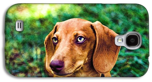 Puppies Galaxy S4 Cases - Dacshund pup Galaxy S4 Case by Dennis  Baswell