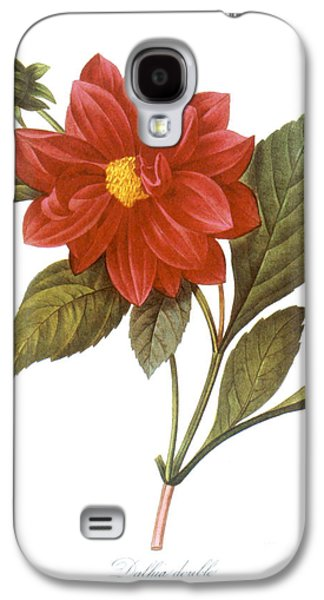 1833 Galaxy S4 Cases - Dahlia (dahlia Pinnata) Galaxy S4 Case by Granger