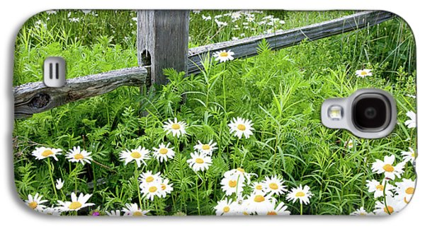Maine Meadow Galaxy S4 Cases - Daisy Fence Galaxy S4 Case by Susan Cole Kelly