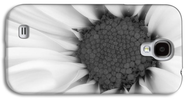 Close Up Floral Galaxy S4 Cases - Daisy Flower Macro Galaxy S4 Case by Tom Mc Nemar