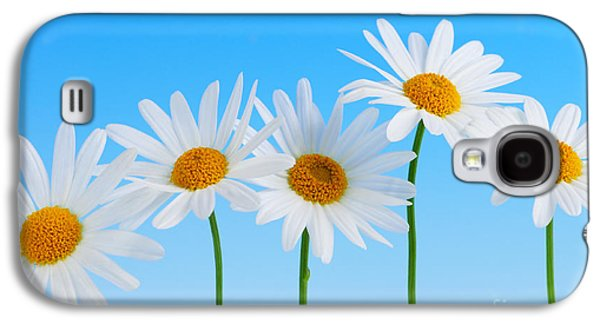 Close Photographs Galaxy S4 Cases - Daisy flowers on blue background Galaxy S4 Case by Elena Elisseeva