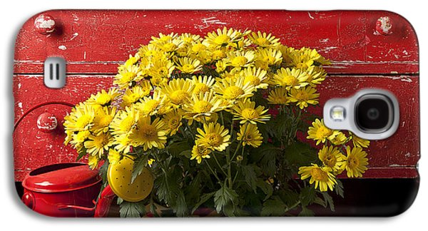Daisy Plant In Drawers Galaxy S4 Case by Garry Gay