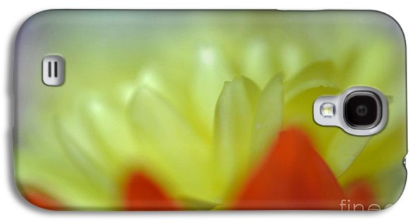 Abstract Nature Galaxy S4 Cases - Daisy Sunrise Galaxy S4 Case by Deb Halloran
