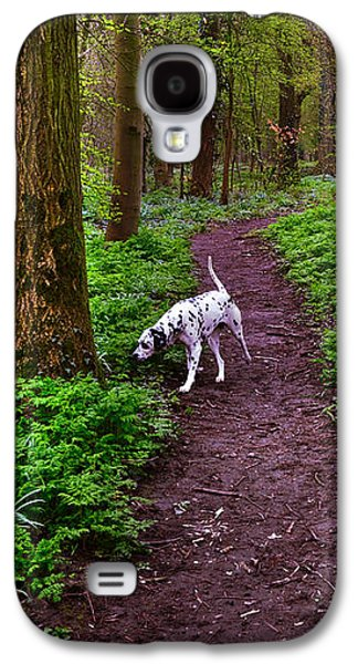 Dog In Landscape Galaxy S4 Cases - Dalmatian In the Spring Woods Galaxy S4 Case by Jenny Rainbow