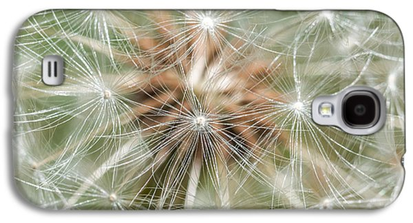 Weed Line Galaxy S4 Cases - Dandelion Sparkles Galaxy S4 Case by Terry DeLuco