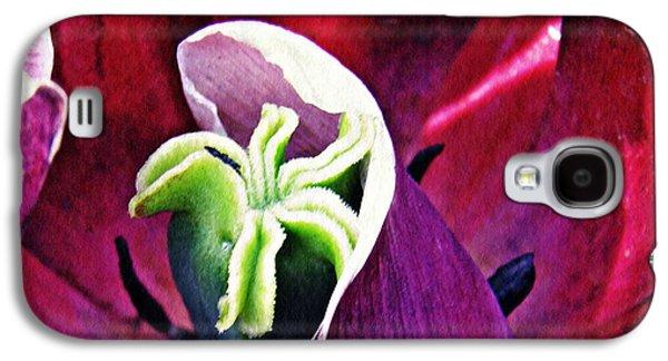 Botanical Galaxy S4 Cases - Dark Tulip Macro Square Format Galaxy S4 Case by Sarah Loft