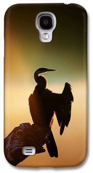 Misty Galaxy S4 Cases - Darter Bird with misty sunrise Galaxy S4 Case by Johan Swanepoel
