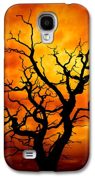 Atmosphere Photographs Galaxy S4 Cases - Dead Tree Galaxy S4 Case by Meirion Matthias