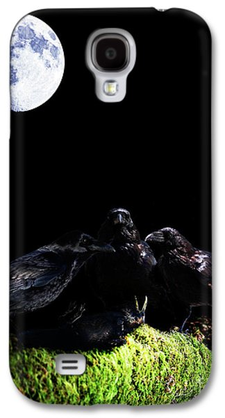 Ghastly Galaxy S4 Cases - Death of a Young Raven Galaxy S4 Case by Wingsdomain Art and Photography