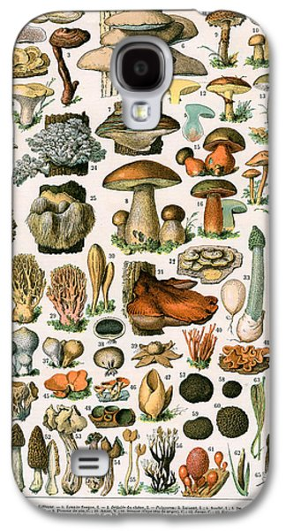 Decorative Print Of Champignons By Demoulin Galaxy S4 Case by American School
