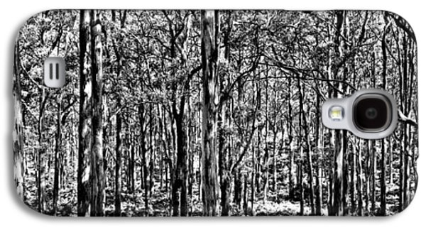 Nature Scene Galaxy S4 Cases - Deep Forest BW Galaxy S4 Case by Az Jackson