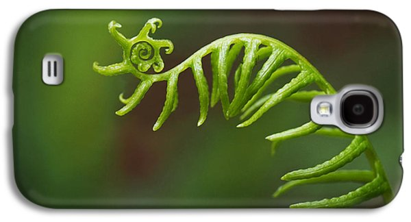 Nature Abstracts Galaxy S4 Cases - Delicate Fern Frond Spiral Galaxy S4 Case by Rona Black