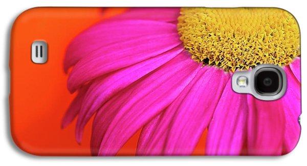 Fushia Galaxy S4 Cases - Delight Galaxy S4 Case by Lisa Knechtel