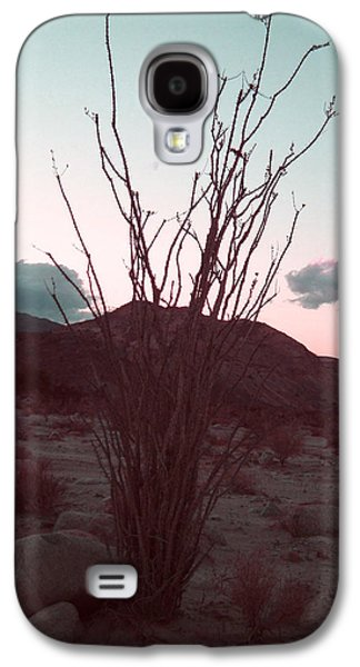 Landscape Photography Photographs Galaxy S4 Cases - Desert Plant and Sunset Galaxy S4 Case by Naxart Studio