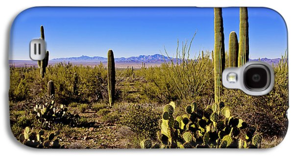 Desert Spring Galaxy S4 Case by Chad Dutson