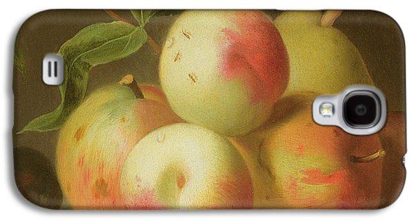 Detail Of Apples On A Shelf Galaxy S4 Case by Jakob Bogdany
