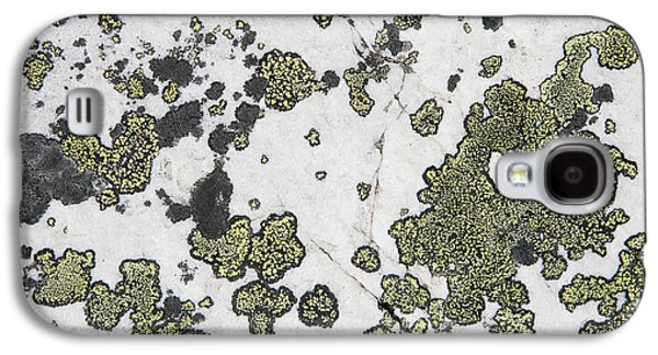 Alga Galaxy S4 Cases - Detail Of Lichen On A White Rock Lake Galaxy S4 Case by Michael Interisano