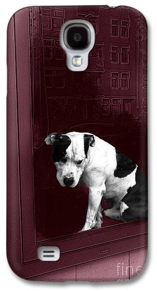 Doggie In The Window Pop Art Galaxy S4 Case by John Rizzuto