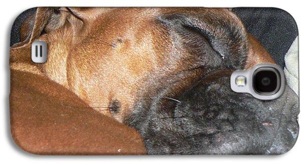 Boxer Galaxy S4 Cases - Doggie ZZZZZZssssssss Galaxy S4 Case by Judy Schneider