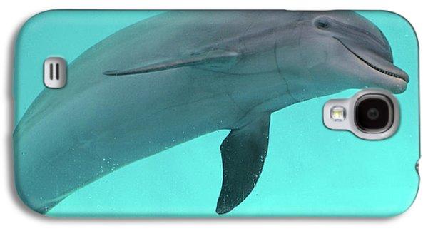 Dolphin Galaxy S4 Case by Sandy Keeton