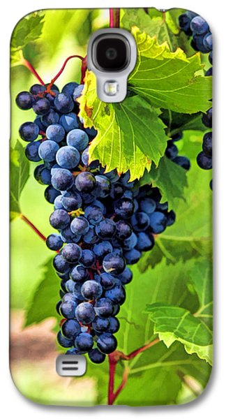 Blue Grapes Galaxy S4 Cases - Door County Grape Cluster Galaxy S4 Case by Christopher Arndt