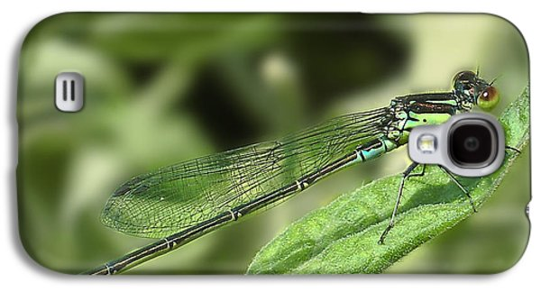 Dragon Photographs Galaxy S4 Cases - DragonFly1 Galaxy S4 Case by Svetlana Sewell