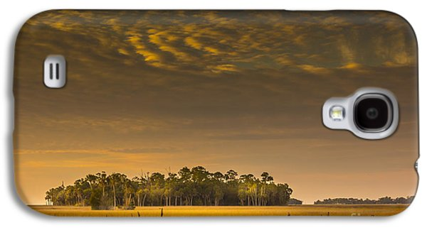 Park Scene Galaxy S4 Cases - Dream Land Galaxy S4 Case by Marvin Spates