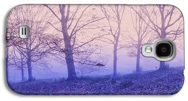Abstract Landscape Galaxy S4 Cases - Dreams in the Mist Galaxy S4 Case by Debra and Dave Vanderlaan
