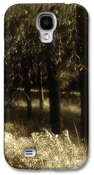 Dreamscape Galaxy S4 Cases - Dreamscape Galaxy S4 Case by Madeline Ellis