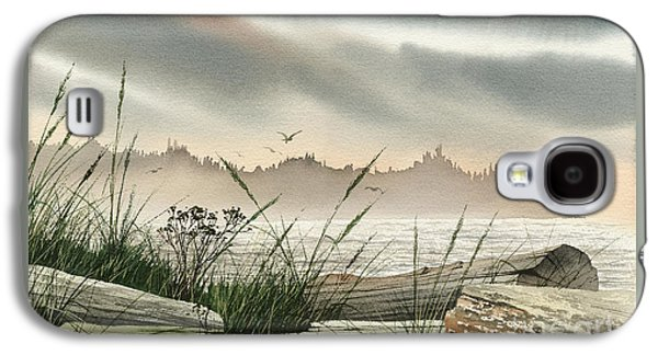 Landscape Framed Prints Galaxy S4 Cases - Driftwood Glow Galaxy S4 Case by James Williamson