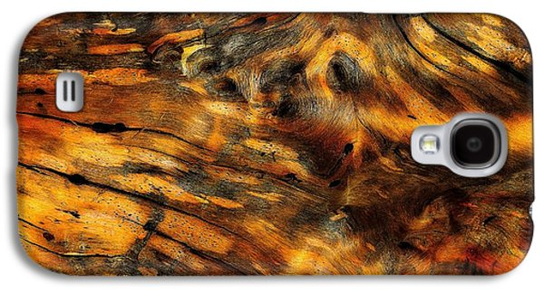 Nature Abstract Galaxy S4 Cases - Driftwood Galaxy S4 Case by Lauren Hunter