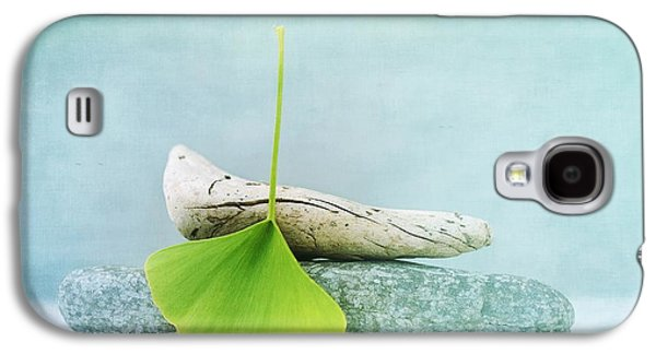 Element Photographs Galaxy S4 Cases - Driftwood Stones And A Gingko Leaf Galaxy S4 Case by Priska Wettstein