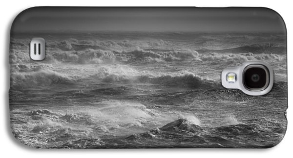 Waterscape Pyrography Galaxy S4 Cases - Drink it in.... Galaxy S4 Case by Willem Lombard