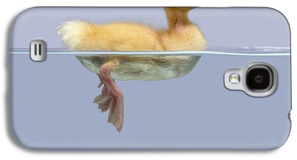 Domesticated Animals Galaxy S4 Cases - Duckling And Goldfish Galaxy S4 Case by Jane Burton