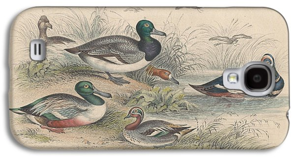 Botanical Drawings Galaxy S4 Cases - Ducks Galaxy S4 Case by Oliver Goldsmith