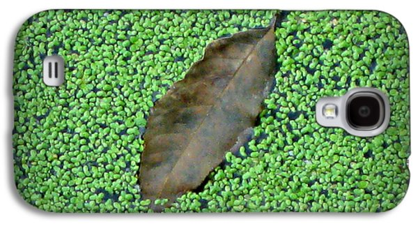 Alga Pyrography Galaxy S4 Cases - Duckweed and Leaf Galaxy S4 Case by Buffy Butler