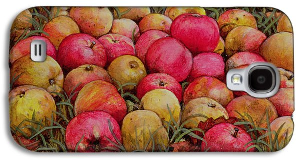 Durnitzhofer Apples Galaxy S4 Case by Ditz