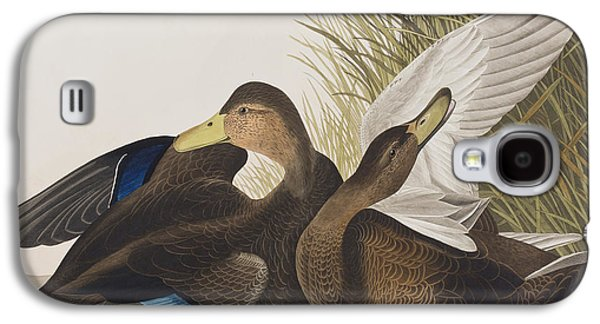Feather Drawings Galaxy S4 Cases - Dusky Duck Galaxy S4 Case by John James Audubon