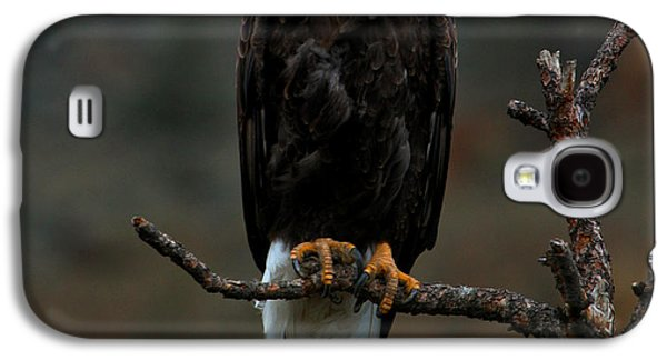 Eagle Scout Galaxy S4 Case by Adam Jewell