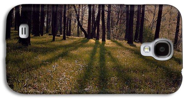 Nature Abstract Galaxy S4 Cases - Early Evening 1 Galaxy S4 Case by Svetlana Nilova
