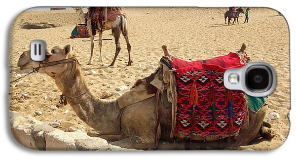 Pyramids Greeting Cards Galaxy S4 Cases - Egypt - Camel getting ready for the ride Galaxy S4 Case by Munir Alawi