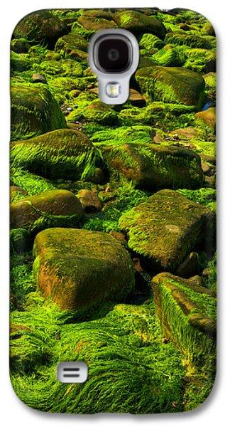 Alga Galaxy S4 Cases - Electric Green Galaxy S4 Case by Irwin Barrett