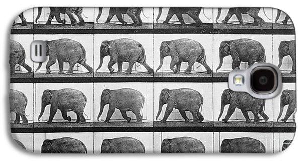 Elephant Walking Galaxy S4 Case by Eadweard Muybridge