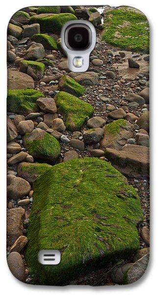 Alga Galaxy S4 Cases - Emerald Procession Galaxy S4 Case by Irwin Barrett