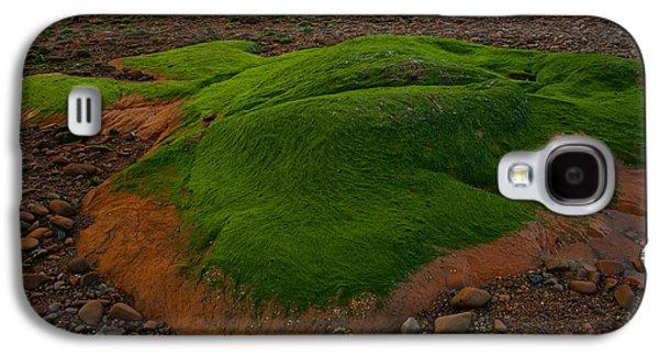 Alga Galaxy S4 Cases - Emerald Velvet Galaxy S4 Case by Irwin Barrett